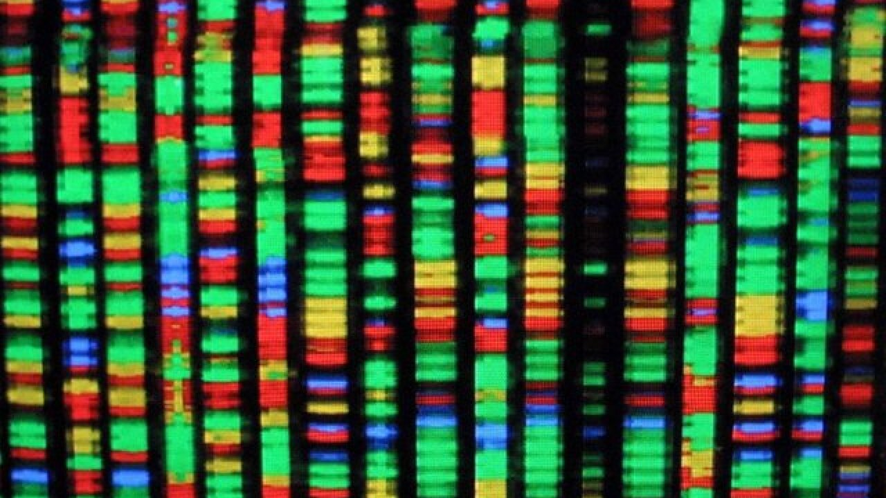 Early results boost hopes for gene editing