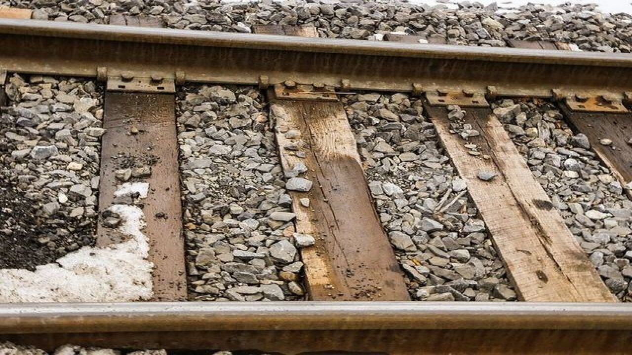 Scrappy, Deno found decapitated at train tracks