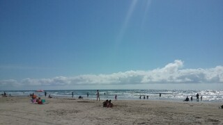 Padre Island National Seashore is FREE today