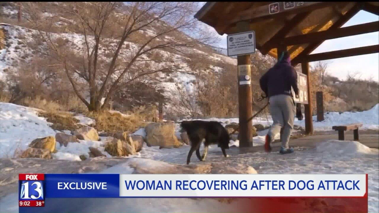 Off-leash dog attacks leashed dog and owner on popular Ogden hikingtrail