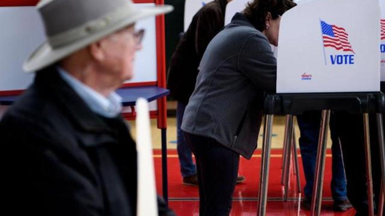 Michigan turnout for midterm election is highest in 56 years