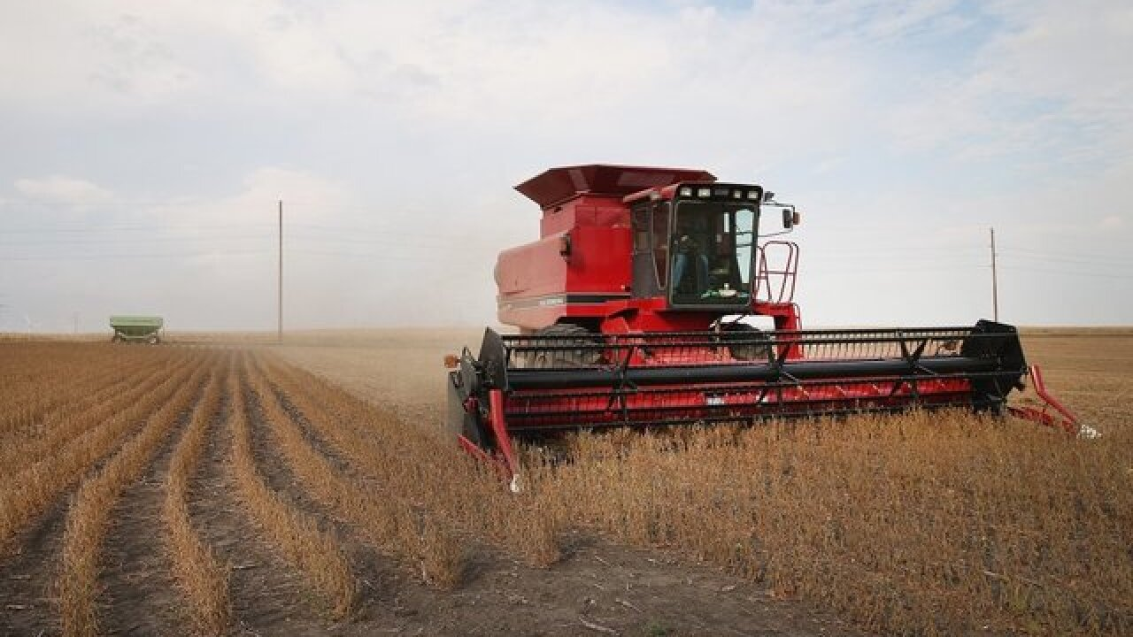 Oklahoma soybean farmers frustrated over price drop