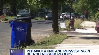 Rehabilitating and reinvesting in Detroit neighborhoods