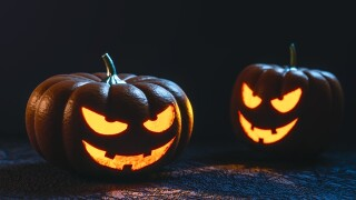 Detroit Zoo animals smash pumpkins as part of Halloween-themed celebration