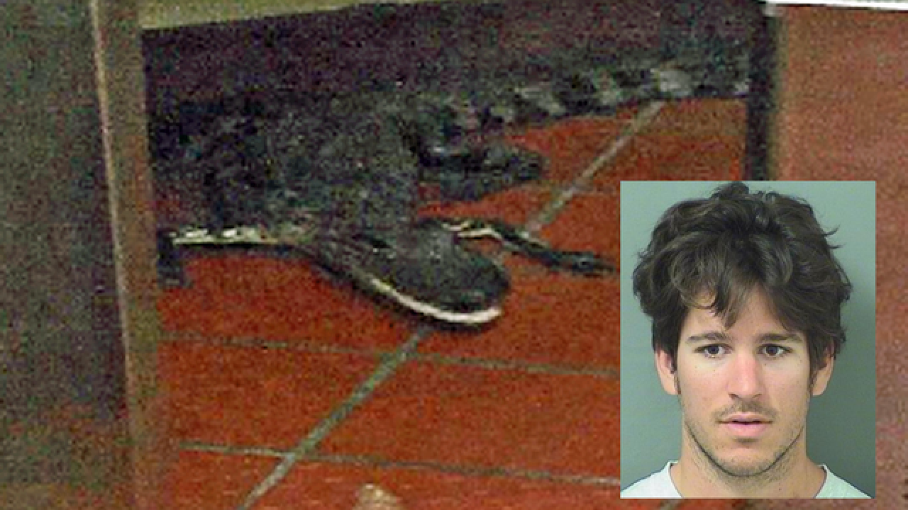 Man who tossed gator into Wendy's found guilty