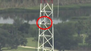 LIVE: Man climbs massive tower at Orlando TV station