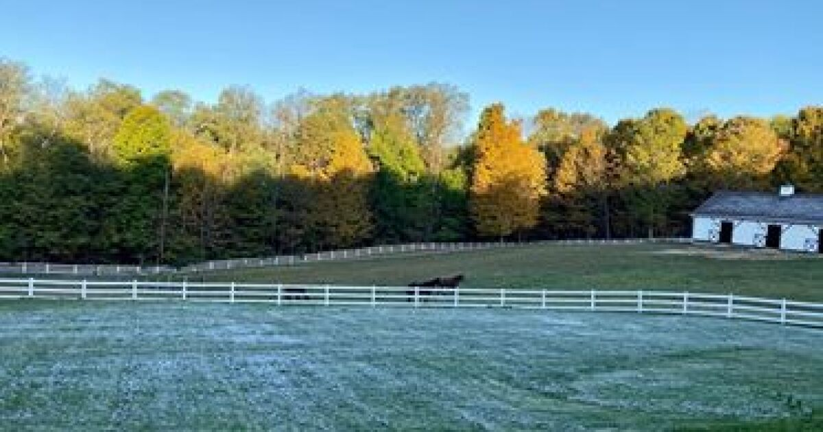 IMAGES: Frost takes over Northeast Ohio