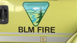 Bureau of Land Management Wildland Firefighters