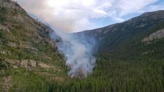 Lion Creek Fire