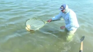 Tips for fly-fishing enthusiasts during hot weather