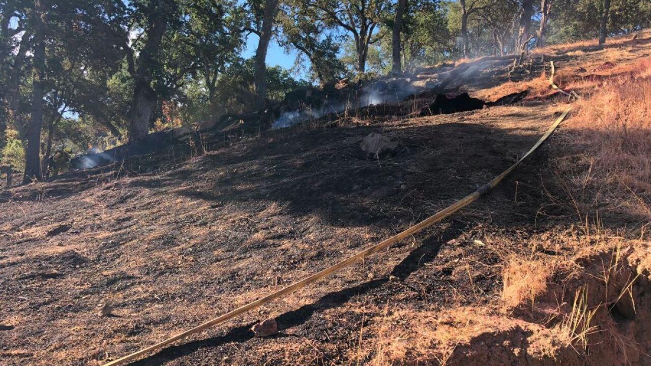 oak fire mop up 3.JPG