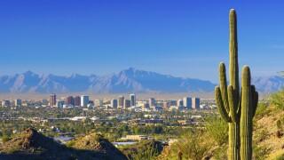 Phoenix skyline and cactus