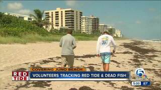 Volunteers track red tide in Juno Beach