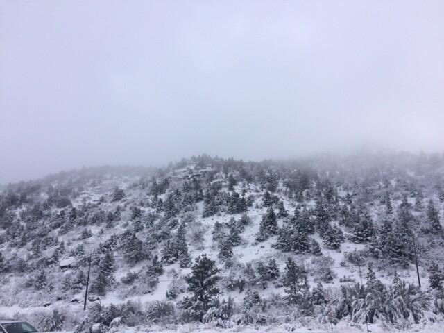 PHOTOS: Christmas Eve snowfall at Lee Canyon