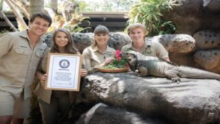 Irwin Family's Rhinoceros Iguana Was Declared The Oldest In The World