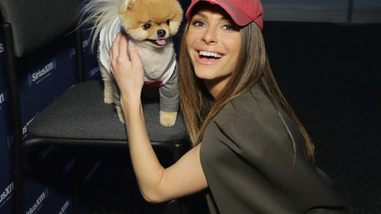 Maria Menounos recovering from brain tumor surgery