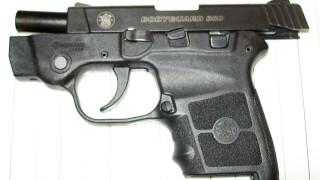 BWI gun 5-22-19.JPG
