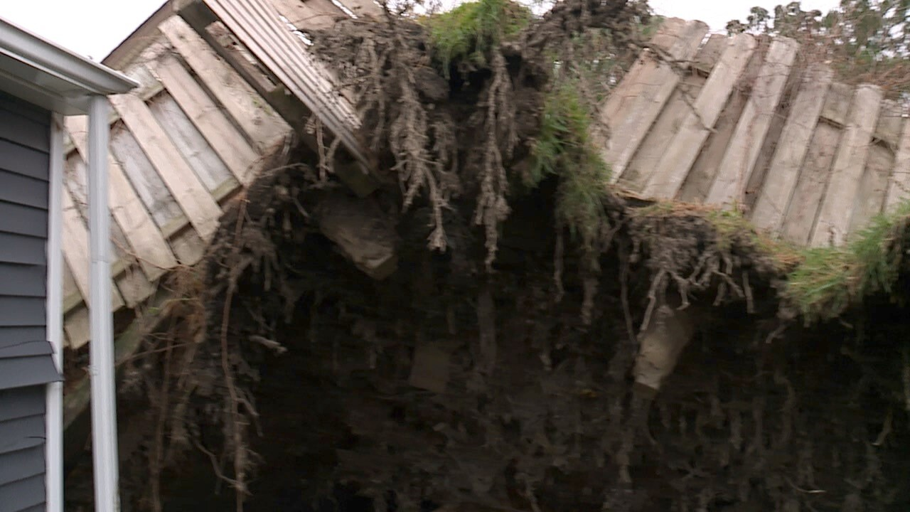 Ohio woman forced to pay for damage caused by uprooted tree in neighbor's backyard
