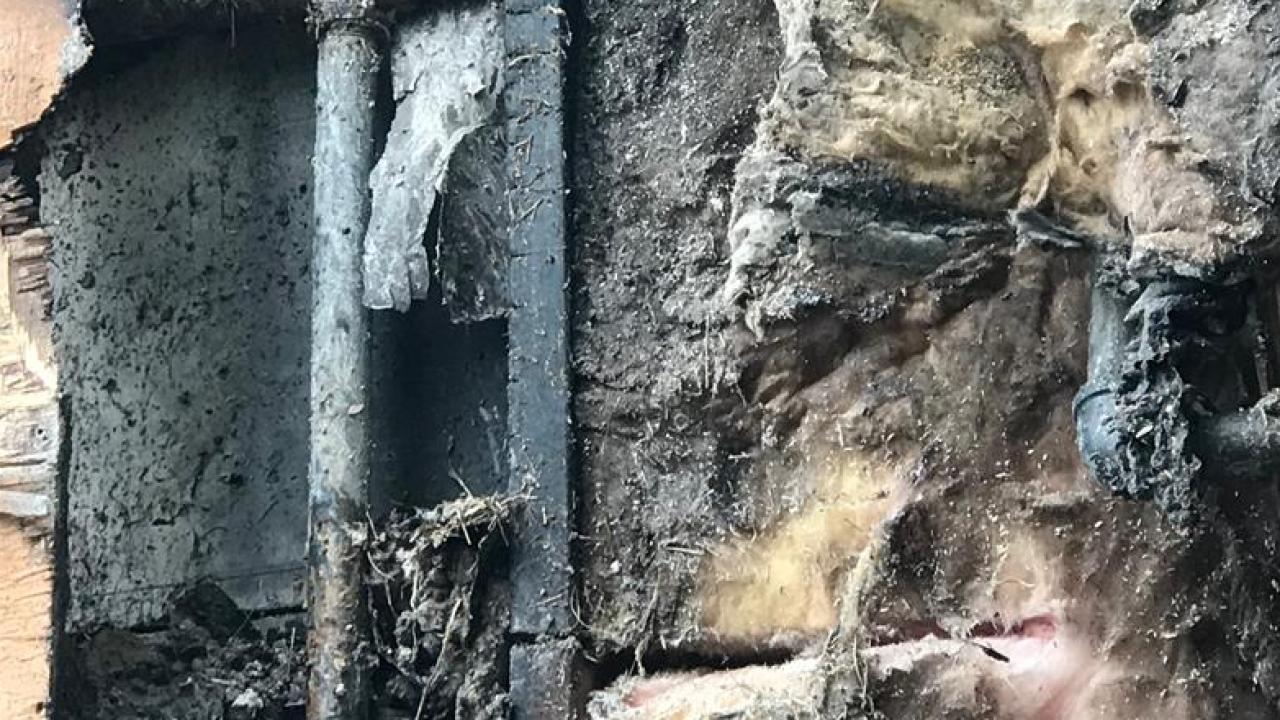 Ciao Mumbo in Whitefish fire