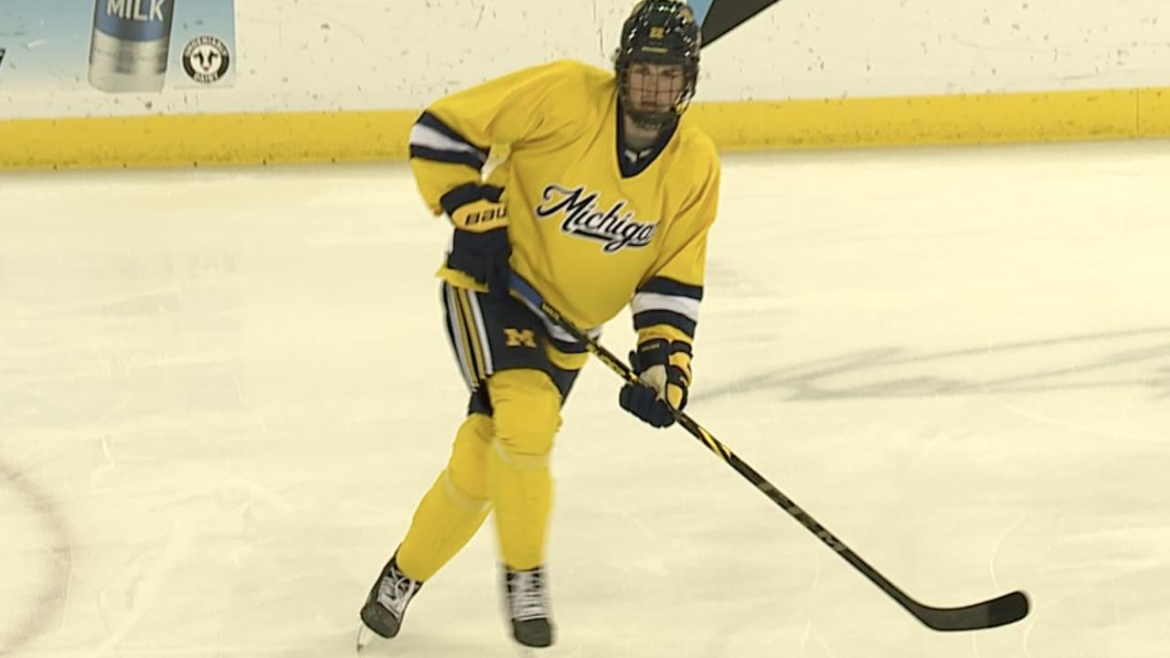 Owen Power Michigan hockey