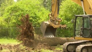 Rattlesnake Creek removal.jpg