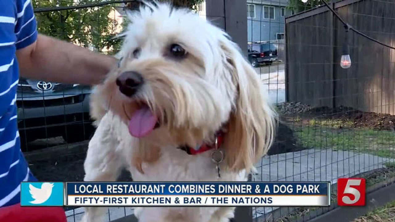 Fifty-First Kitchen & Bar Invites Dogs To Dinner