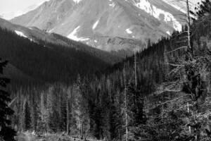 Torreys Peak.jpg