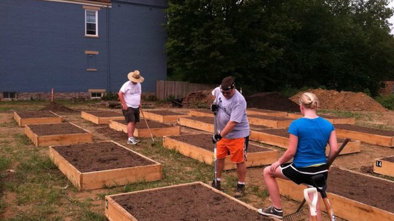 Community gardens bring neighborhoods together