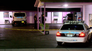shooting and carjacking in Tampa