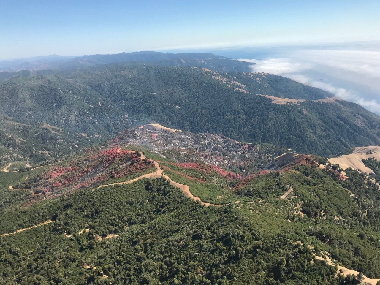 Aerial photos of Mill Fire in Big Sur. Photo Courtesy: Los Padres National Forest