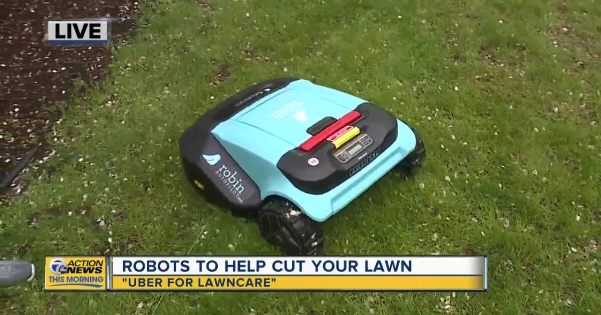 Hate mowing your lawn? This robot will do it for you
