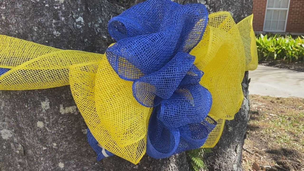 blue yellow.jpg