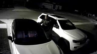 Car-Burglars-Lakeland-PD-71619.png