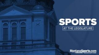 Sports at the Legislature