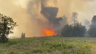 green-meadows-fire.png