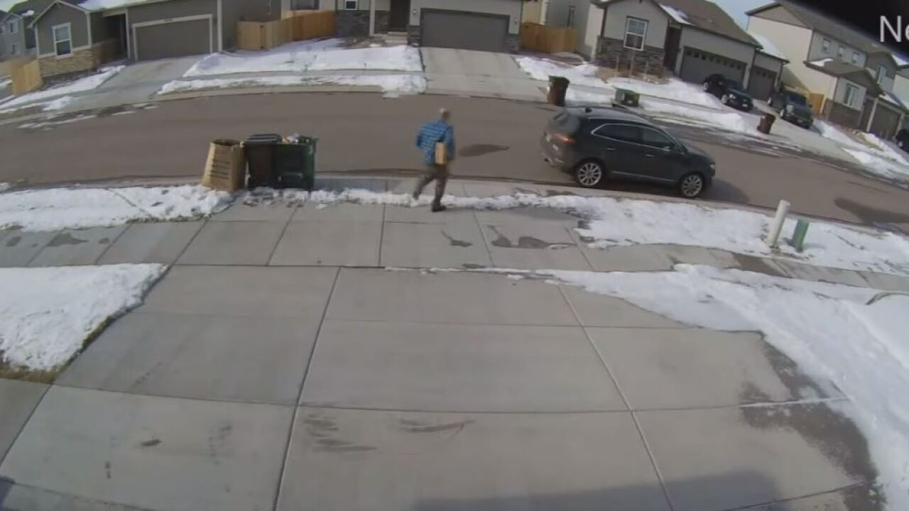 Porch Pirate off Dublin