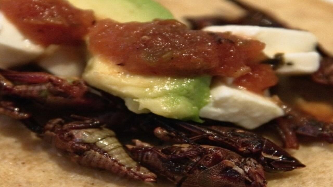Tried them? 7 strange things Arizonans eat