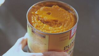 AM Jennifer CRTV What's In Canned Pumpkin PKG.transfer_frame_100.jpeg