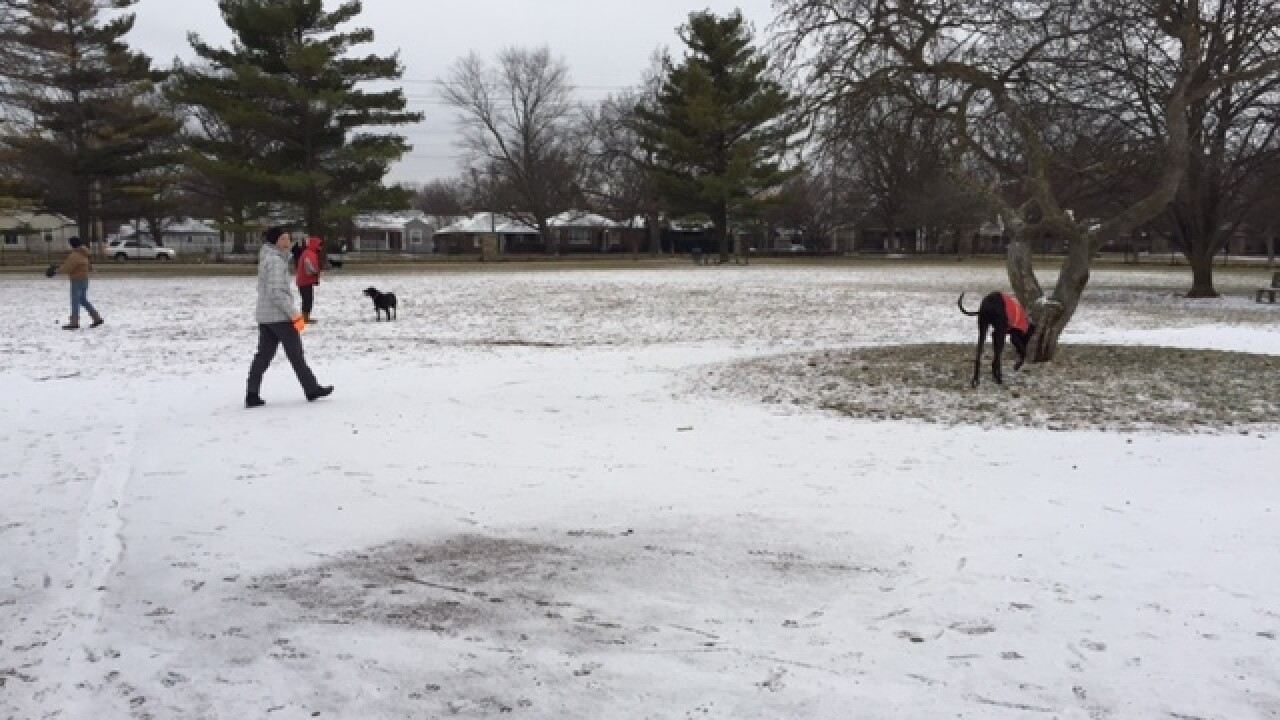 PHOTOS: Snowy Thursday