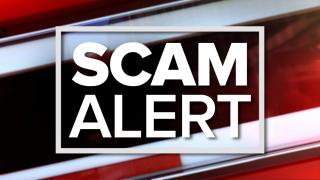 scam-alert.png