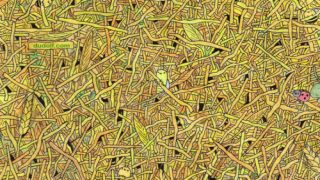 This Puzzle Involves Literally Finding The Needle In The Haystack