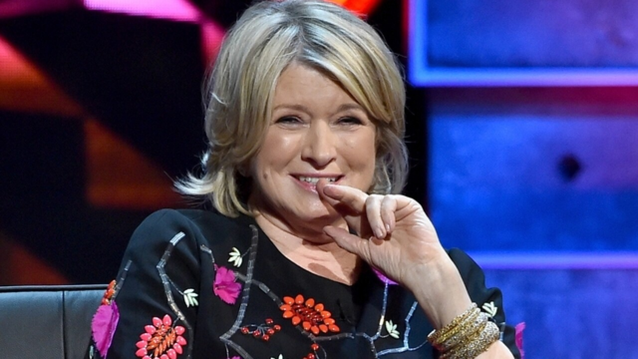 Martha Stewart's first Uber ride was 'a mess inside and out'