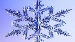Snowflake Gary winter weather