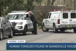 Jars of human remains found under Florida home