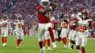 APTOPIX Browns Cardinals Football