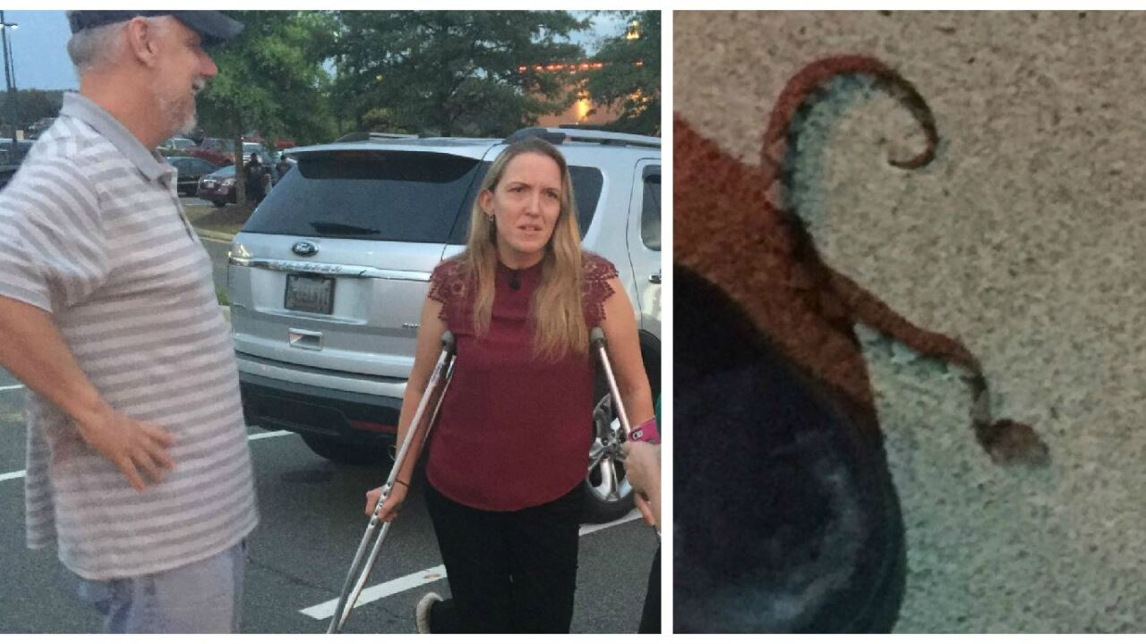 'I got bit! I got bit!' Woman bitten by copperhead while walking into Va. restaurant