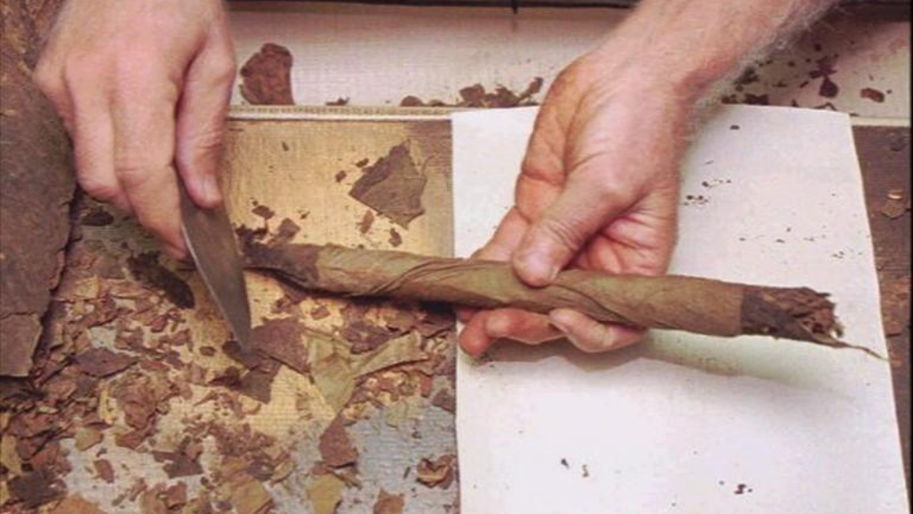 hand rolling cigars AP.png