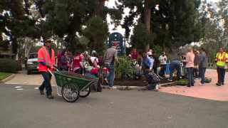 Volunteers clean Balboa Park for MLK Day of Service