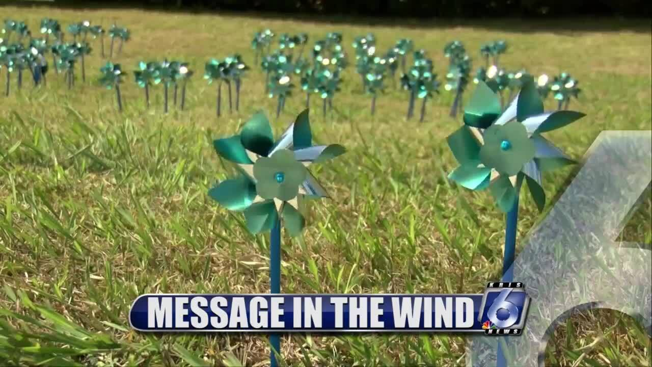 Pinwheels remembering the victims of child abuse or neglect
