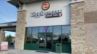 Ziggi's Coffee